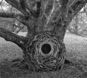 Andy Goldsworthy quotes