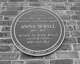 Anna Sewell quotes