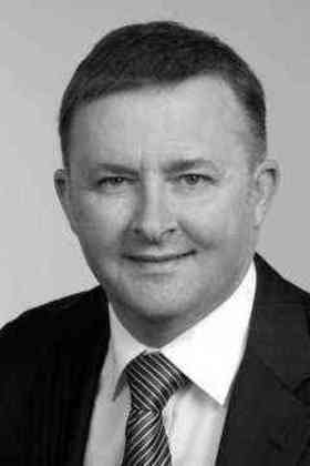 Anthony Albanese quotes