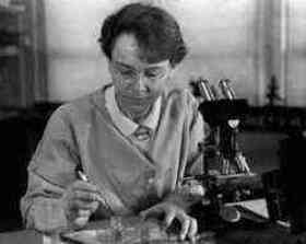 Barbara McClintock quotes