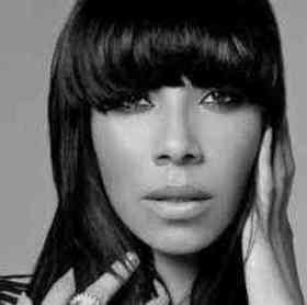 Bridget Kelly quotes