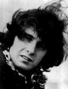 Don McLean quotes