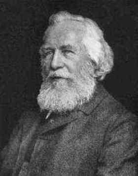 Ernst Haeckel quotes