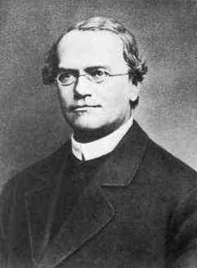 Gregor Mendel quotes