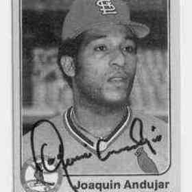 Joaquin Andujar quotes